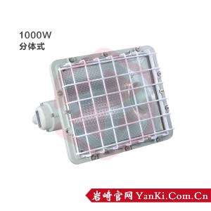BTd51-防爆泛光灯(1000W)
