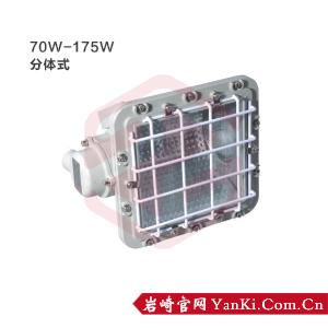 BTd51-防爆泛光灯(175W/分体式)