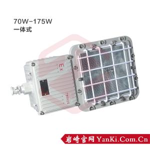 BTd51-防爆泛光灯(175W/一体式)