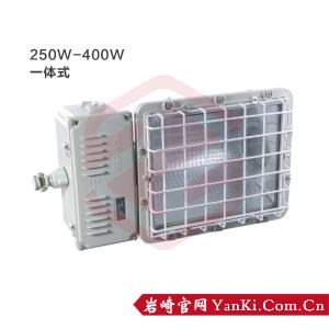 BTd51-防爆泛光灯(400W)
