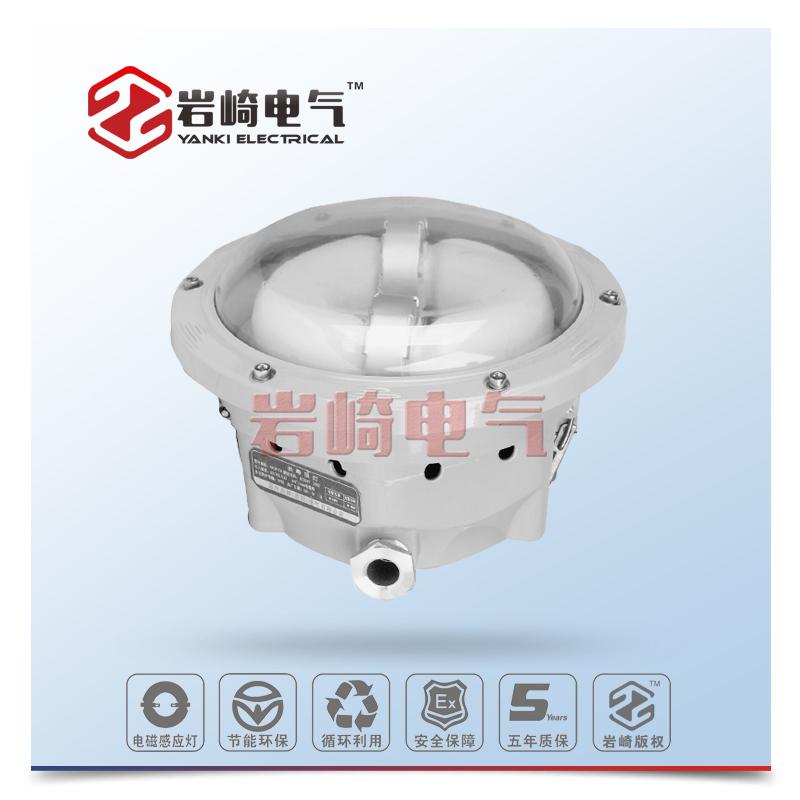 GHD518-高效长寿顶灯