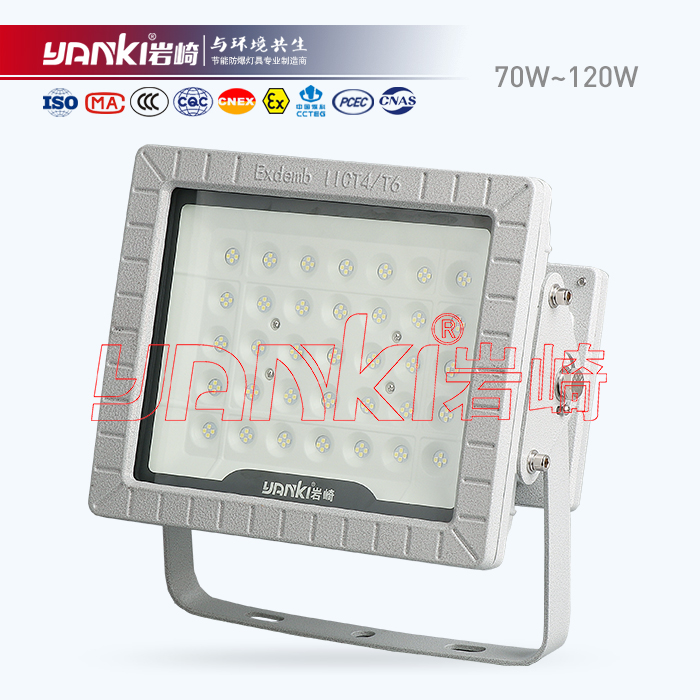 BLD150-LED防爆泛光/投光灯(I型)