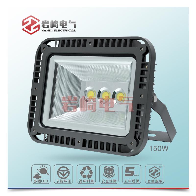 GLD8580-LED泛光/投光灯