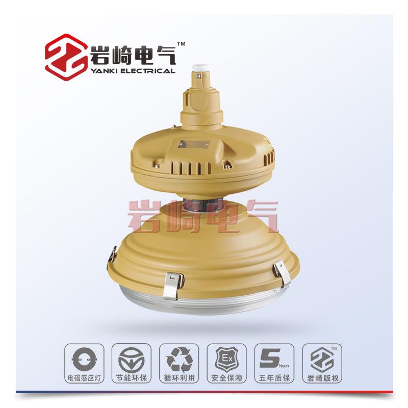 SBF6112-免维护节能防水防腐灯