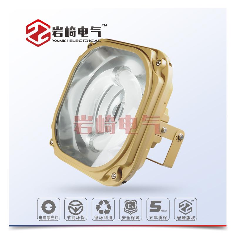 SBF6130-YQL系列免维护节能防水防尘防腐泛光灯